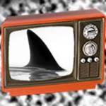 SC Shark
